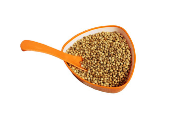Golden natural coriander seeds in orange cup with spoon