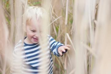 Boy walking through wheat field