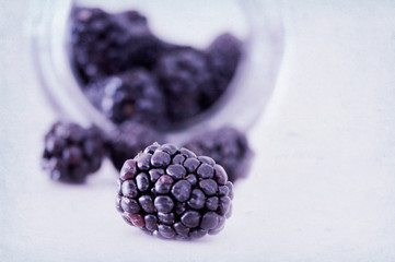 Close-up view of blackberry