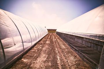 Polyethyelene tunnels