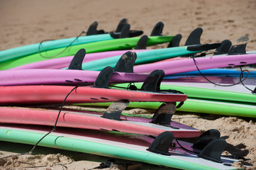 Australia, New South Wales, Sydney, Colorful surfboards beach