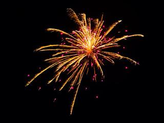 USA, Arizona, Apache, Alpine, Fireworks display on Independence Day
