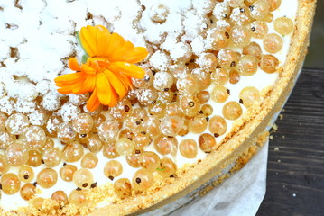 White currant rustic tart