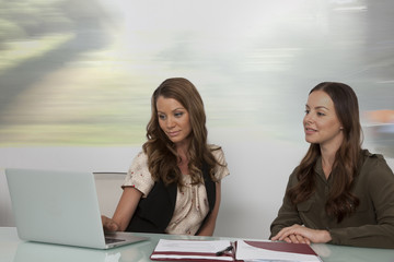 Two women looking at computer screen in meeting