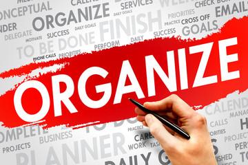 ORGANIZE word cloud, business concept