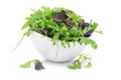 bowl of fresh green salad, close-up, isolated