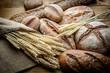 The Bread