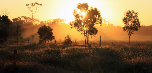 Australia, Queensland, Mount Coolon, Dusty sunset on an outback road