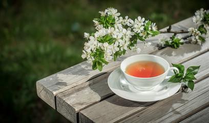 Cup of herbal tea, artistic - art photo