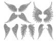 Vector heraldic wings or angel - 77444027