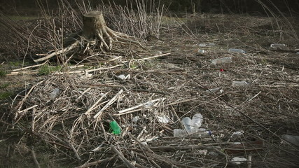 Shot of trashes in nature