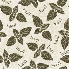 Seamless pattern with basil. Hand-drawn floral background. Mono