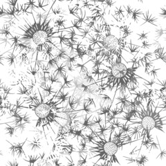Seamless pattern of dandelion . Hand-drawn floral background. Mo