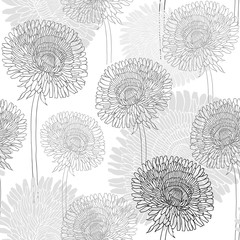 Seamless pattern of dandelions . Hand-drawn floral background, m