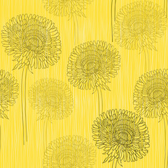 Seamless pattern of dandelions . Hand-drawn floral background,