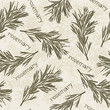 Seamless pattern with rosemary. Hand-drawn floral background. M