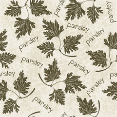 Seamless pattern with parsley. Hand-drawn floral background. Mo