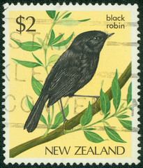 stamp printed in New Zealand, shows a black robin