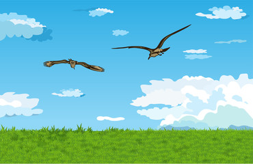 Landscape withe and birds.Vector