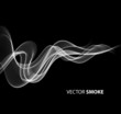 Vector realistic smoke on black background - 77459086