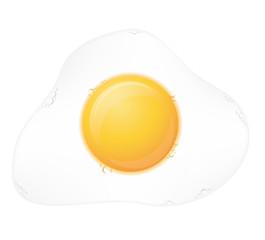 fried egg vector illustration