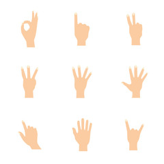 Vector illustrations set of woman hands in various gestures.