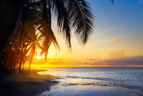 Art Beautiful sunrise over the tropical beach - 77461629