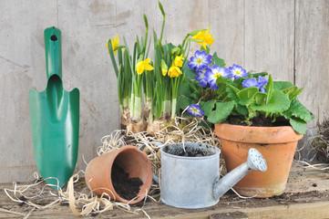 pots de fleurs et accessoires de jardinage