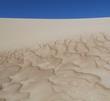 dune at Eucla, Nullarbor, Western Australia