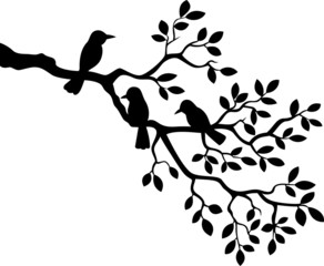 Illustration of tree branch with bird silhouette