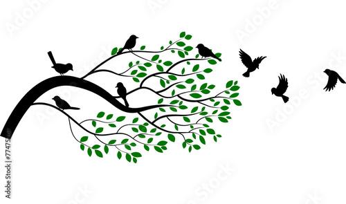 Naklejka Illustration of tree branch with bird silhouette