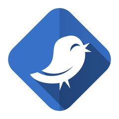 twitter flat icon