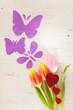 canvas print picture - Tulpen, Schmetterlinge und Herzchen als Frühjahrsboten