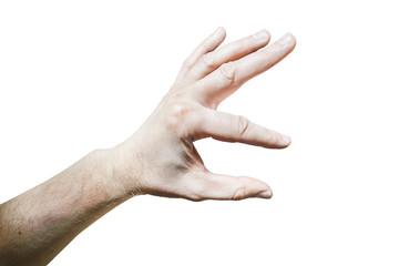 Men's hand with a stretched index finger and thumb on white back
