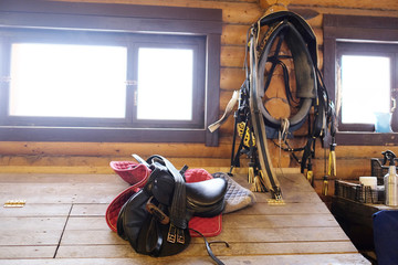 Horse equipment - saddlery