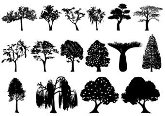 Illustration of trees