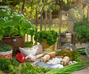 frische Kräuter und Gemüse aus dem Garten