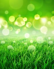 fresh green sensation
