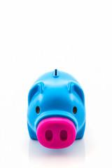 Blue piggy bank saving .