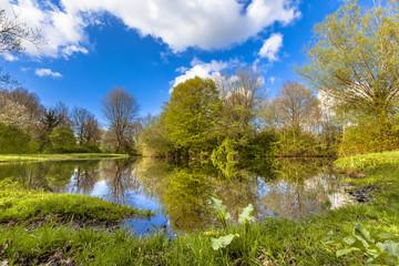 Springtime ecological park