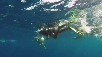 People snorkelling with cameras underwater swim to take pictures