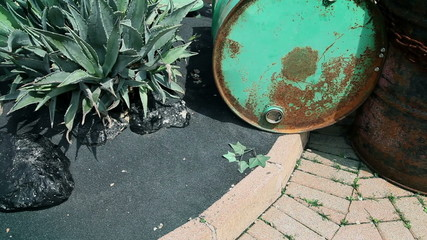 Asphalt with greenery growing