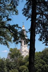 Fatima shrine between trees