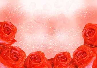Romantic background with roses and petals