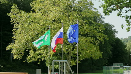 Flags waving while wind is blowing infront of the trees