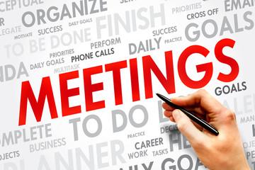 MEETINGS word cloud, business concept