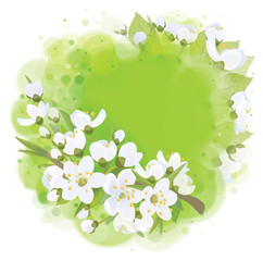 Vector frame,  spring blossoming background.
