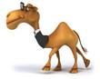 canvas print picture - Fun camel