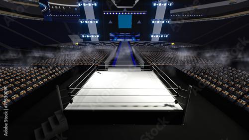 In de dag Vechtsport stadium