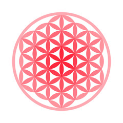 Flower of Life Symbol - Vector Set (Chakra Colours)